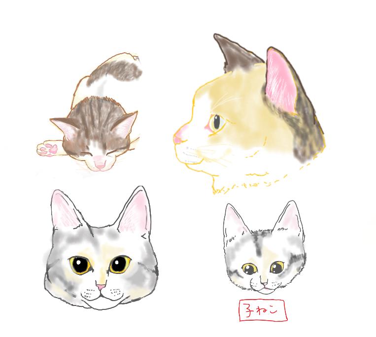 角度によって違う 猫の顔の描き方 押さえておくべき3つのアングル
